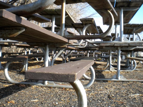 Layers of picnic tables huddled together against the expectant cold winter.